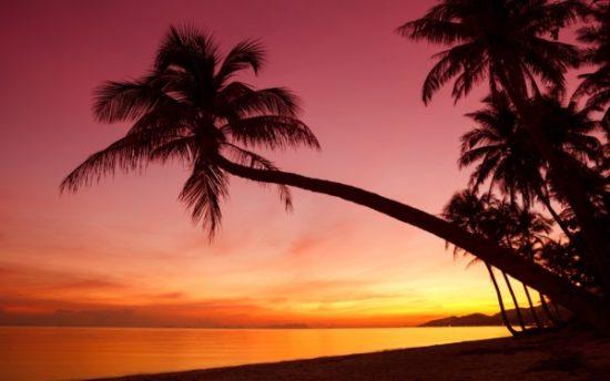 Playa bonitas  (13)