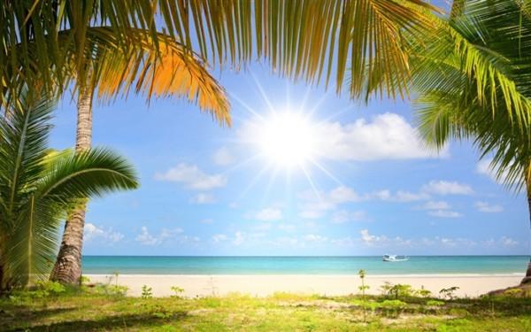 Im genes con paisajes de verano sol palmeras y playa informaci n im genes - Playa wallpaper ...