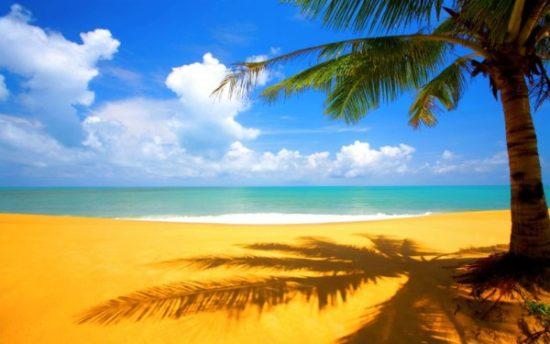 Playa bonitas  (9)
