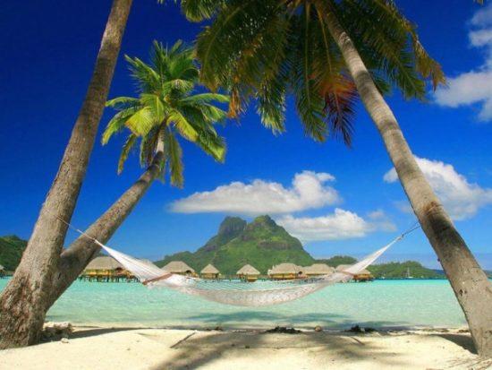 Playa sol y palmeras  (5)