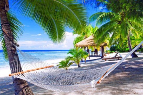 Playa sol y palmeras  (6)