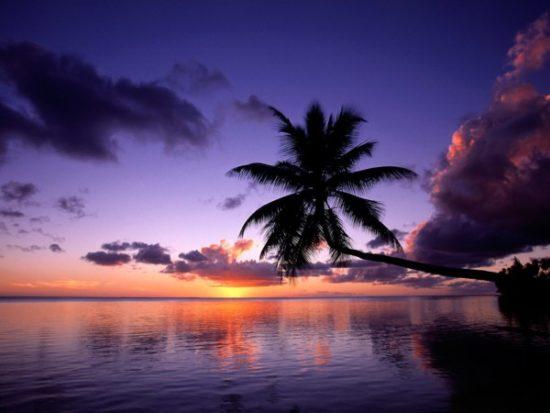 Playas paradisiacas  (12)