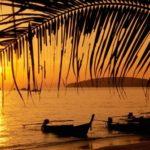 Imágenes con paisajes de Verano: sol, palmeras y playa
