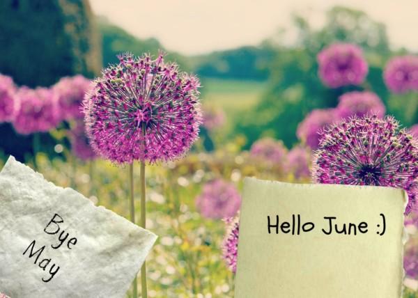bye_may__hello_june_by_angelsekulovska-d67sxt7