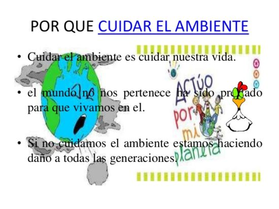 cuidado del medio ambiente (5)