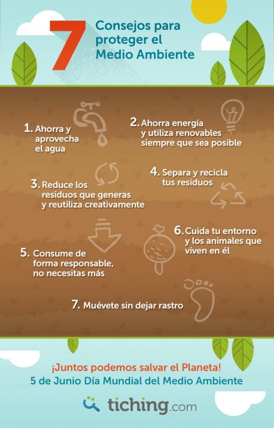 cuidado del medio ambiente (8)