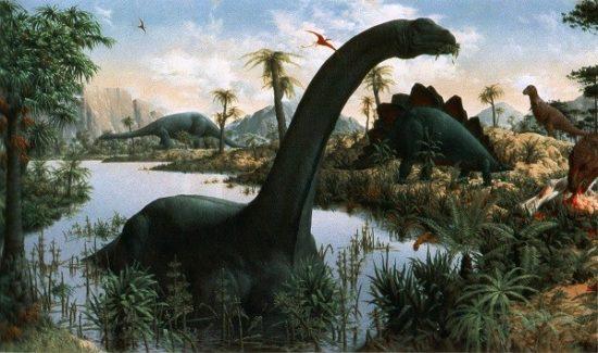 especies de Dinosaurios (10)