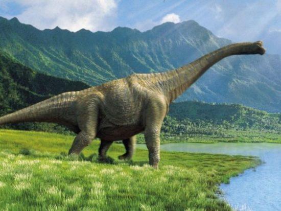 especies de Dinosaurios (12)
