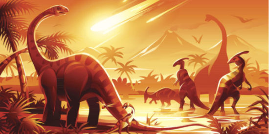 especies de Dinosaurios (16)