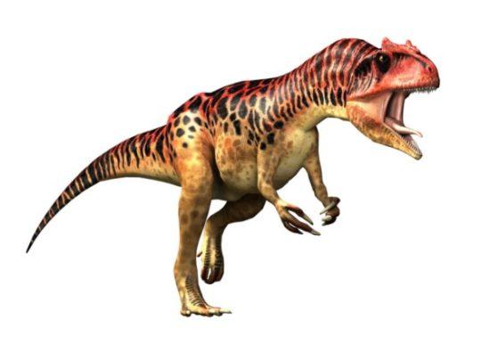 especies de Dinosaurios (18)