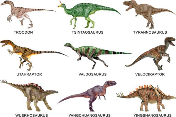 Informacion Imagenes De Dinosaurios Y Dibujos Para Colorear E Imprimir Informacion Imagenes Pypus está ahora en las redes sociales, síguelo y encontrarás las novedades en dibujos para imprimir y colorear. dibujos para colorear e imprimir