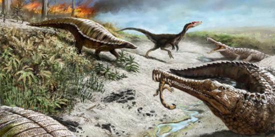 especies de Dinosaurios (4)