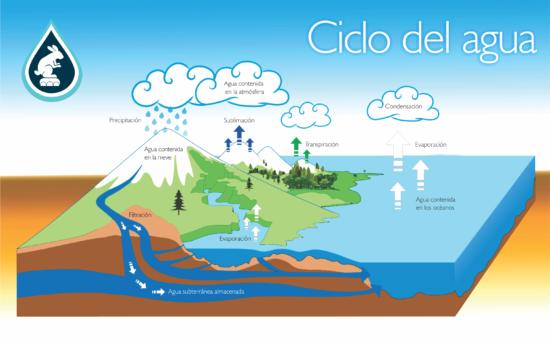 Ciclodel_agua
