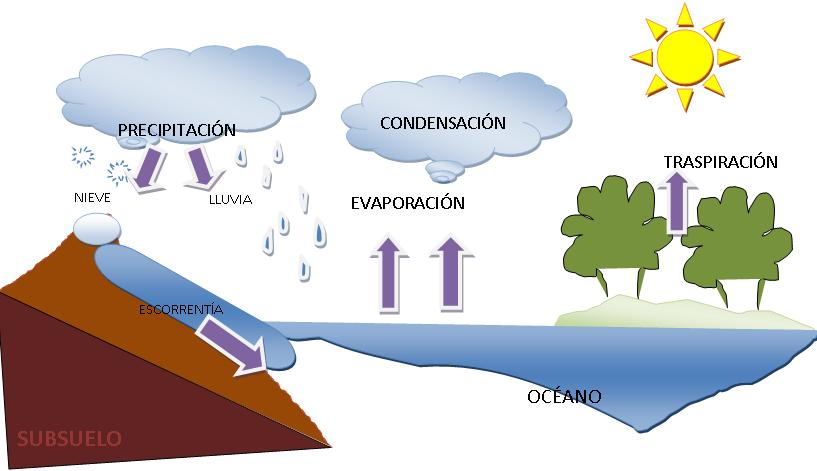 ciclo-hidrologico-rebeca1