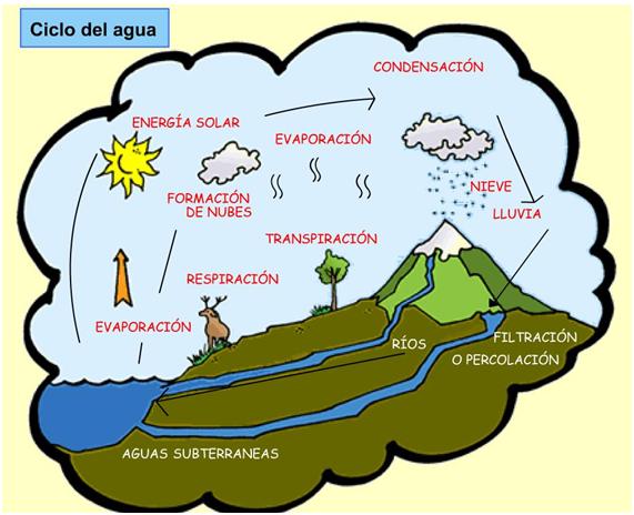 Imágenes Del Ciclo Del Agua Para Niños Explicación Resumen Y