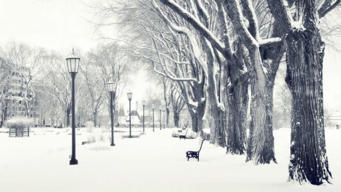 invierno-parque