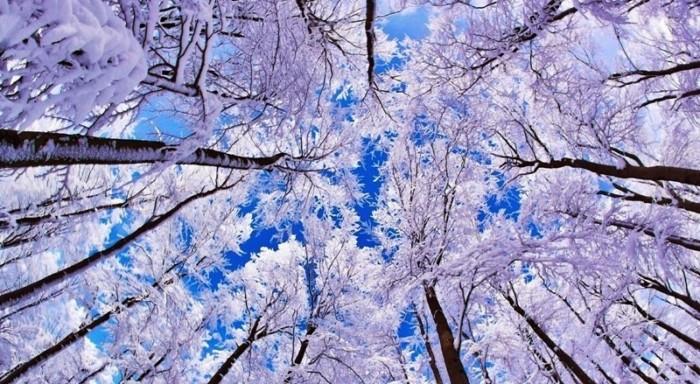invierno1 (1)