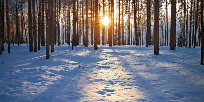 la-terapia-de-la-luz-y-la-tristeza-de-invierno_1
