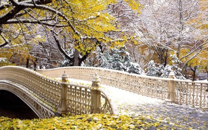 paisajes-invierno-central-park-new-york