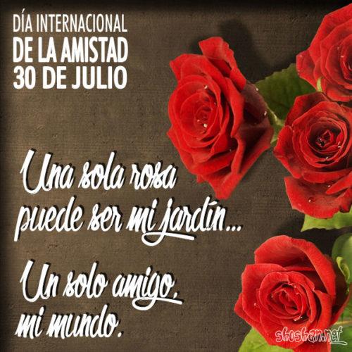 día internacional de la amistad - frases (10)