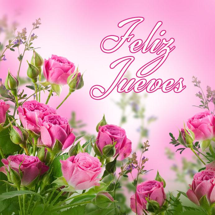 feliz-jueves-rosas