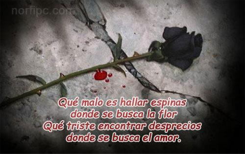 poemas-tristes-de-amor-1