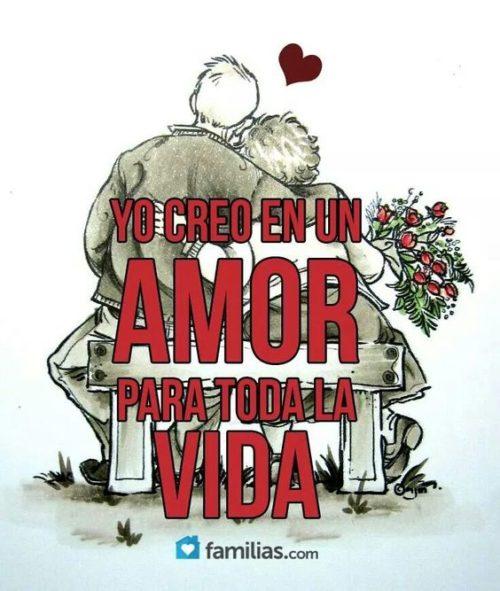 amor 53