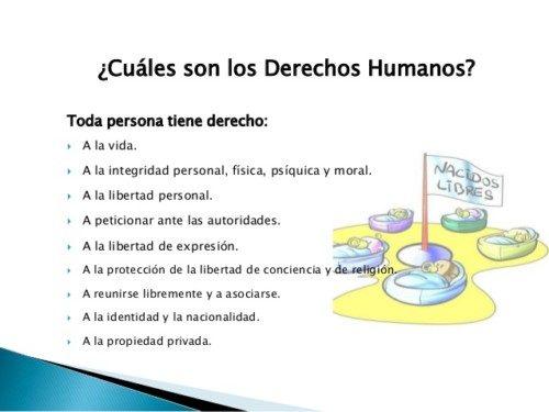 constitucin-derechos-fundamentales-y-derechos-humanos-6-638