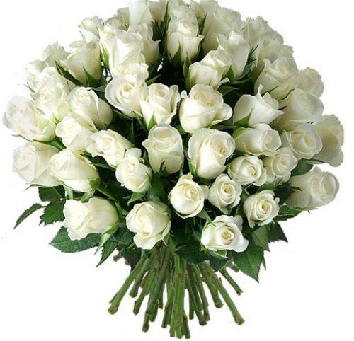 imagenes-de-ramos-de-rosas-blancas