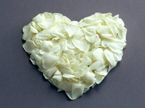 corazon-de-petalos-de-rosas-blancas