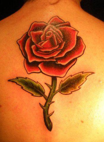 Imágenes De Rosas Rojas Blancas Azules Negras Ramos Y Tatuajes