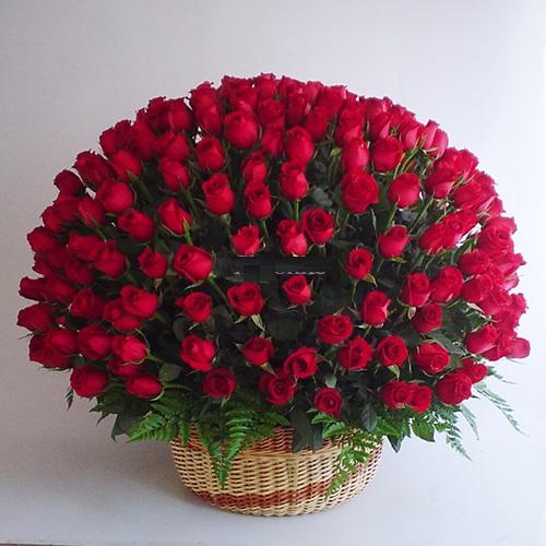 Im genes de rosas rojas blancas azules negras ramos y - Ramos de flores grandes ...