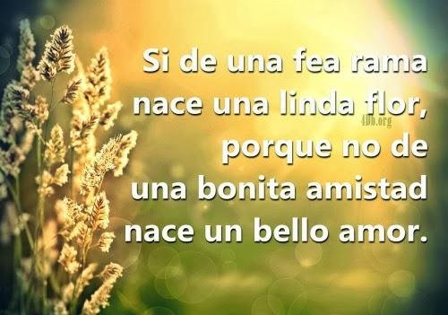 Imagenes De Amor Bonitas Con Frases Romanticas Para Enamorar
