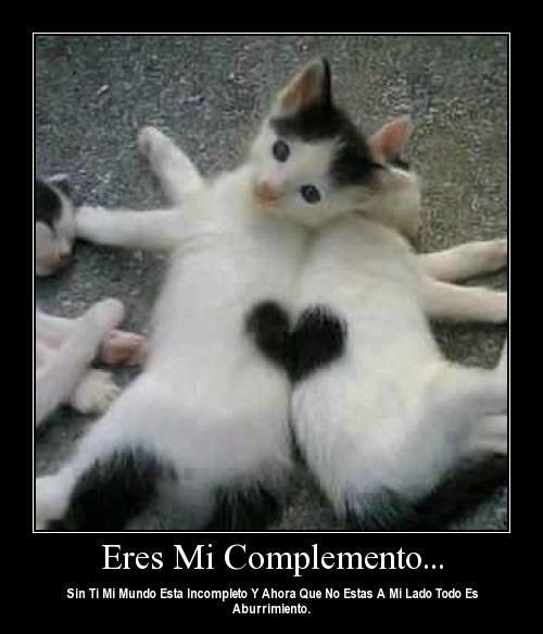 eres_mi-complemento