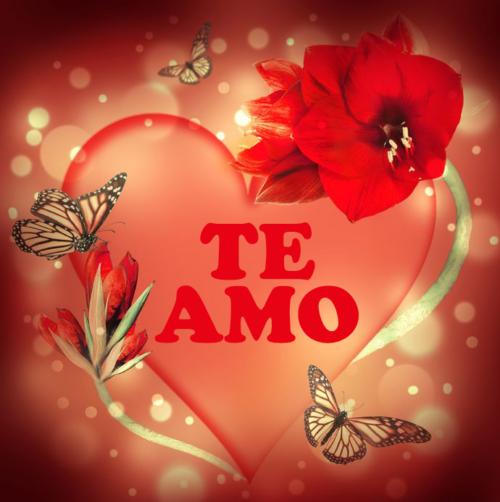 imagen-amor-te-amor