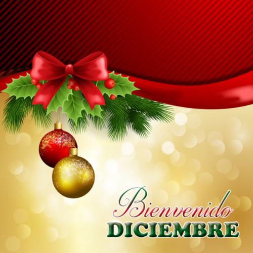 bienvenido-diciembre-5