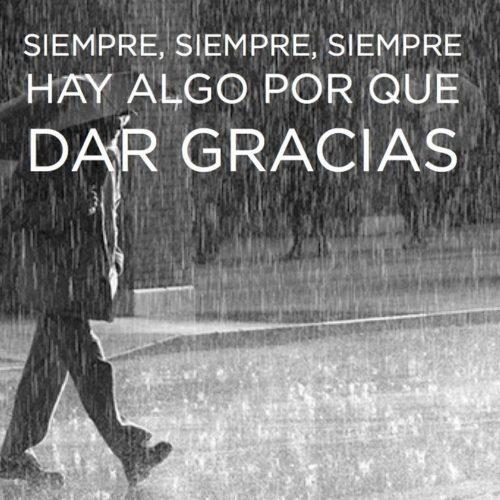 77 Imágenes Con Frases De Agradecimiento Y Gratitud