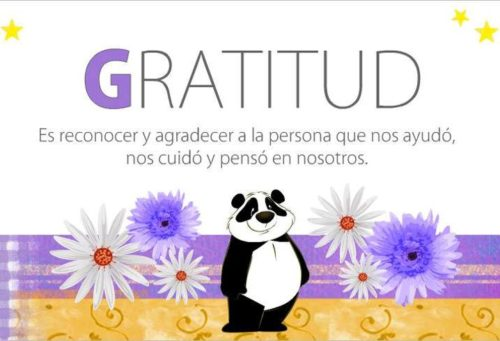 77 Imágenes con frases de agradecimiento y gratitud | Información ...