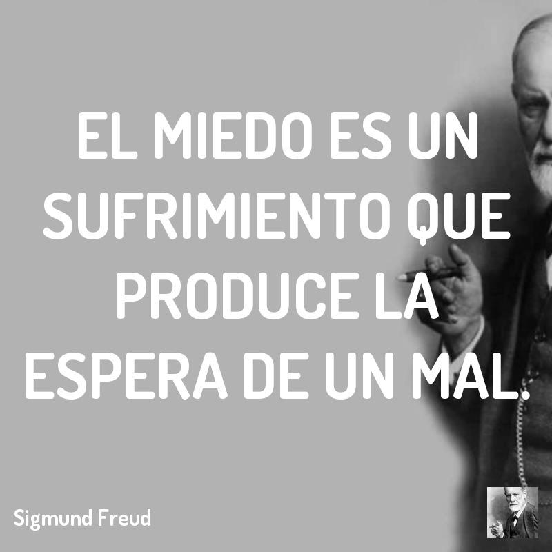 Sigmund Freud Teorias Libros Frases E Imágenes