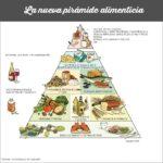 Pirámide Alimenticia y Plato de alimentación saludable [Universidad de Harvard]