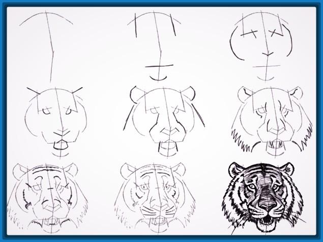 Dibujos Para Aprender A Dibujar A Lapiz Paso A Paso Informacion