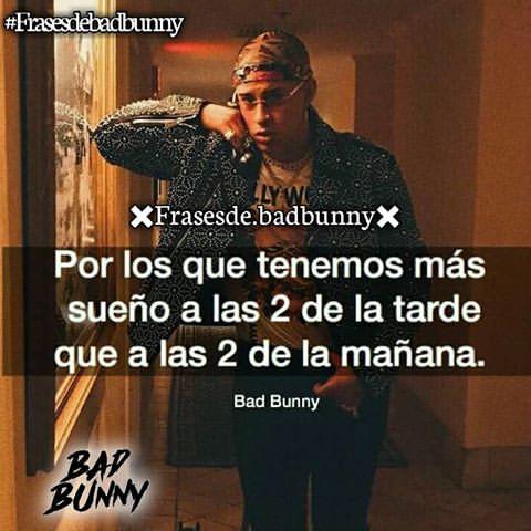 Frases De Bad Bunny Con Imágenes Información Imágenes
