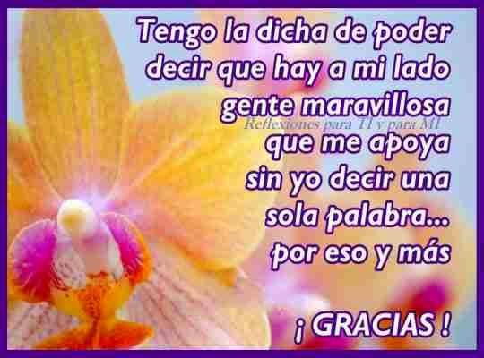 Imagenes Con Frases De Gracias Por Tu Amistad Informacion Imagenes
