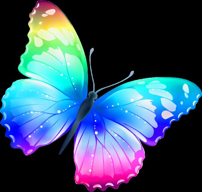 Imágenes De Mariposas Animadas Bonitas De Colores Con Frases