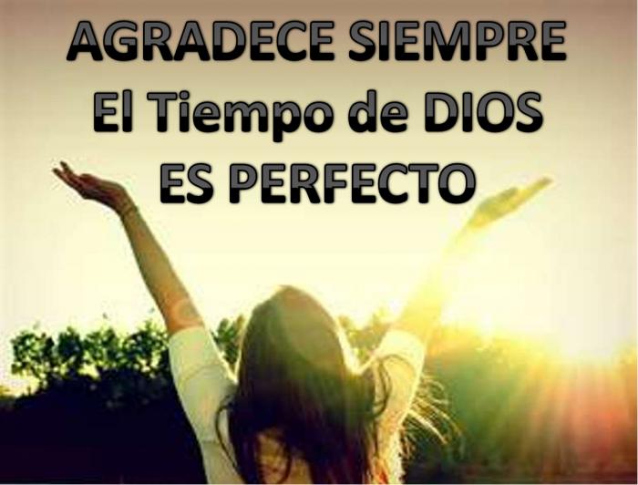 Imágenes De Agradecimiento A Dios Con Frases Cristianas Información Imágenes