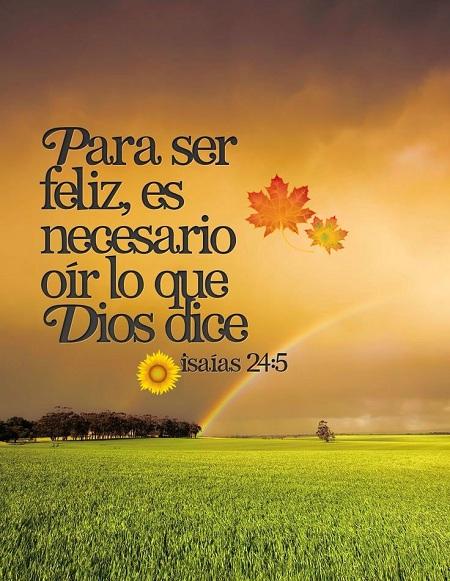 Imágenes De Agradecimiento A Dios Con Frases Cristianas
