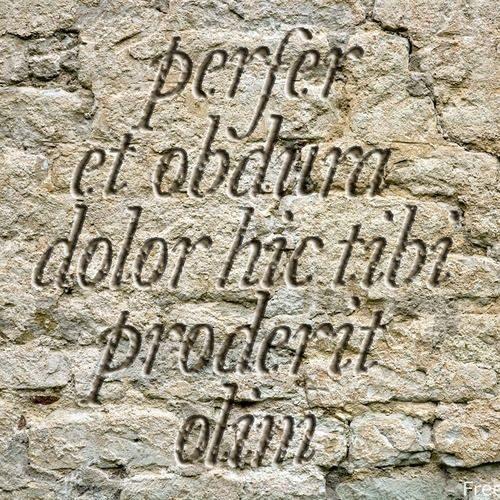 Frases En Latín Bonitas Y Cortas Con Significado